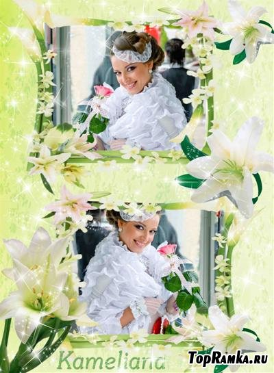 Рамочка для Photoshop  - Романтические лилии