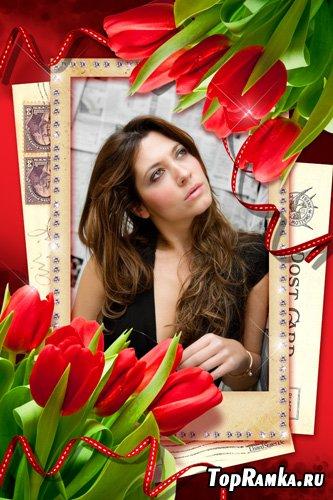 Рамка для фото - Красные тюльпаны