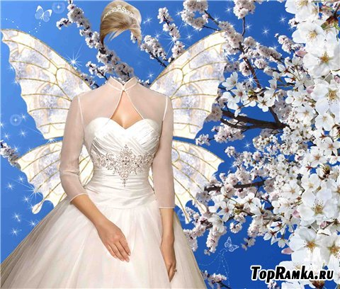 Шаблон для фотошопа – Весенняя бабочка