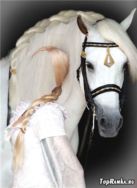 Шаблон для фотошопа – Моя лошадка