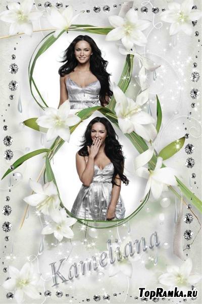 Рамочка для Photoshop Нежные белые лилии