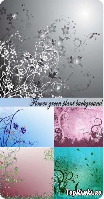 Скачать фоны для фотошопа - Flower green plant background