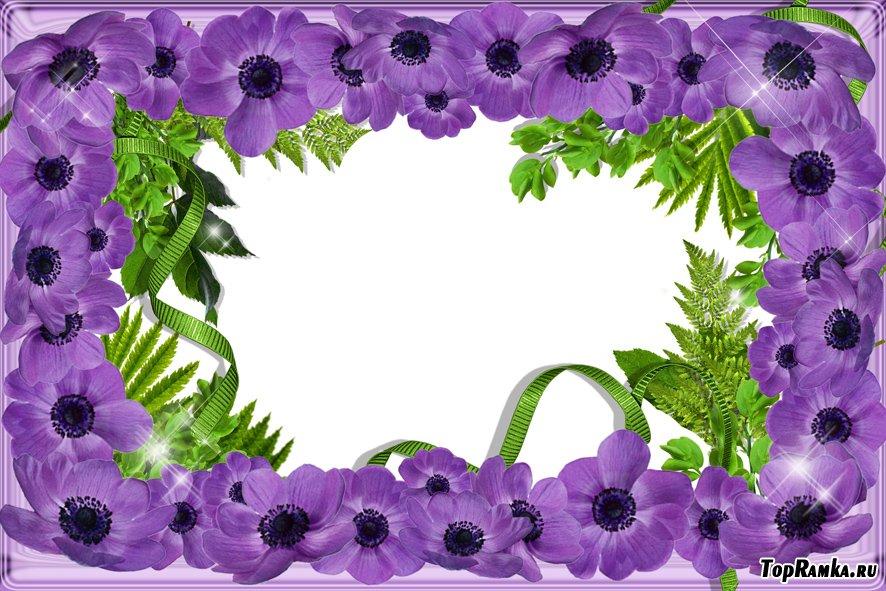 Шаблоны для оформления цветов фото