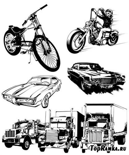 Auto vectors