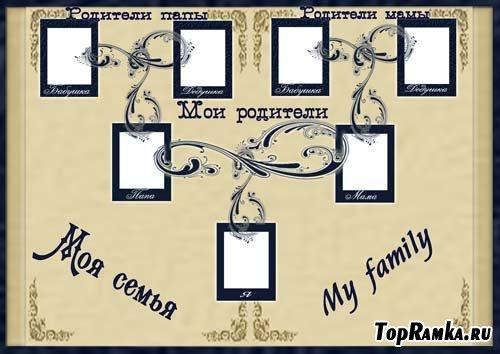 Моя семья генеалогическое дерево