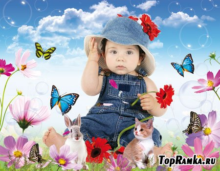 Шаблон детский для Photoshop – Моя зайка