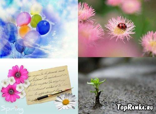 Подборка изображений Весна
