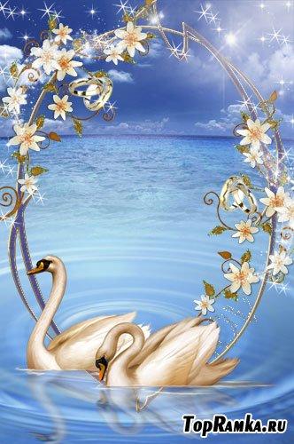 Свадебная рамочка для фото - С лебедями