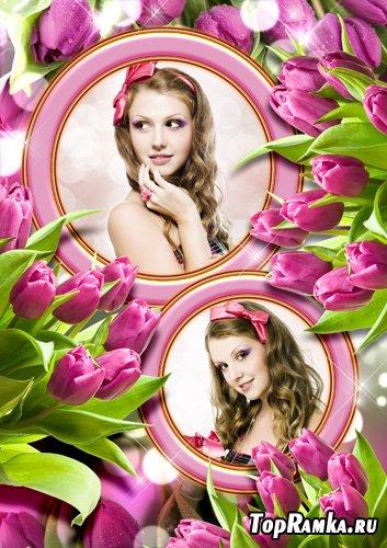 Рамка для фото - Море тюльпанов