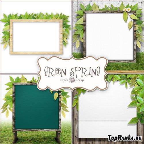 Textures - Green Spring