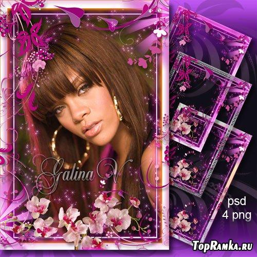 Цветочные фоторамки - Розовый рай