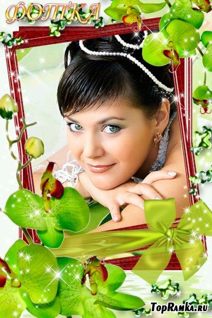 Цветочная рамка для фото - Зелёные  орхидеи