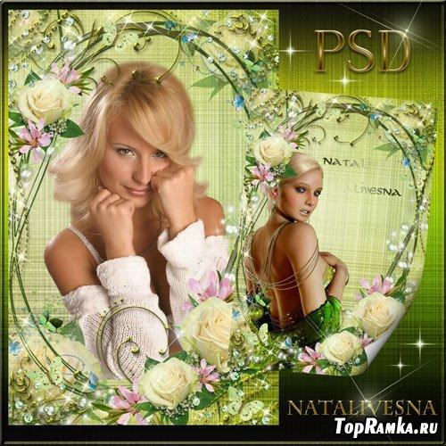 Рамка для Photoshop –  Очарованье белой розы