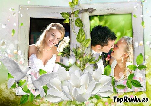 Свадебная рамка для фото - Свежесть