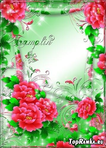 Рамка  для Photoshop  –  У меня в садочке расцвели цветочки