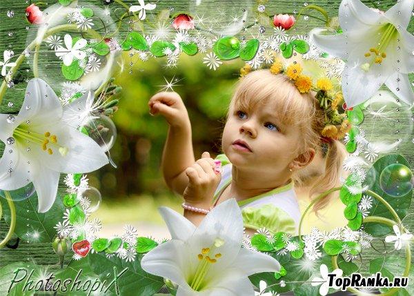 Фоторамка для Photoshop с цветами – Сияние белых лилий