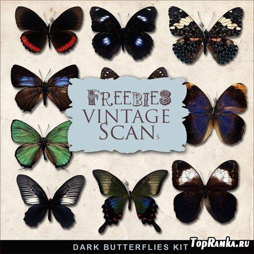 Scrap-kit - Dark Butterflies