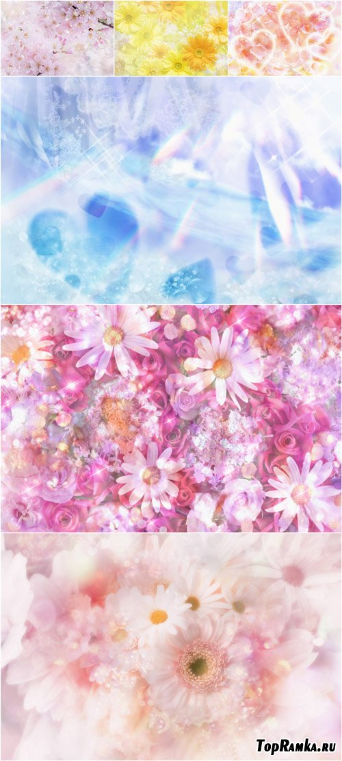 Floral & Romantic backgrounds 2