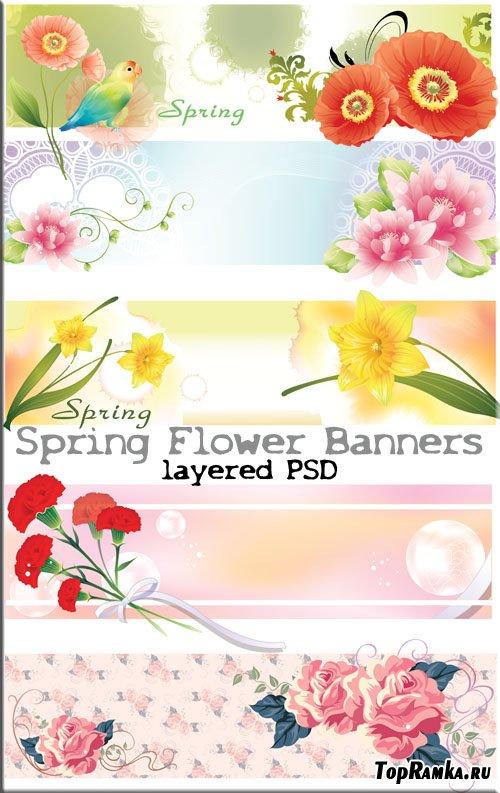 Нежные весение цветы широкие фоны (PSD)
