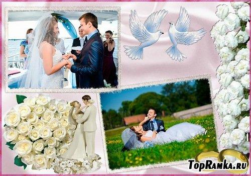 Свадебная рамка - Голуби и розы