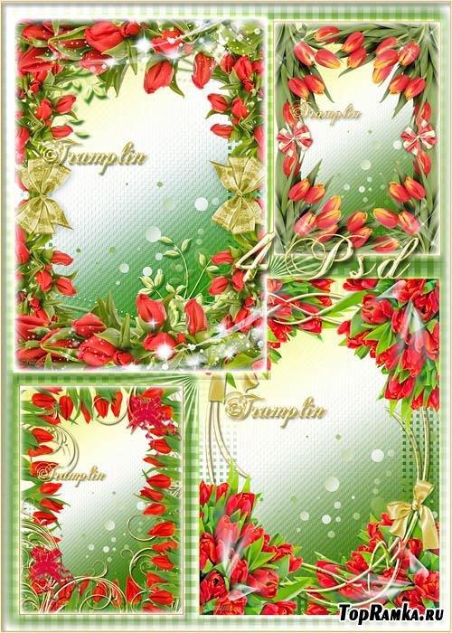 4 Цветочные рамки для фото – Хоровод тюльпанов