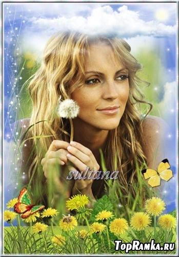 Рамка для фотошопа - Одуванчик, солнечный цветок, улыбается медовою улыбкой