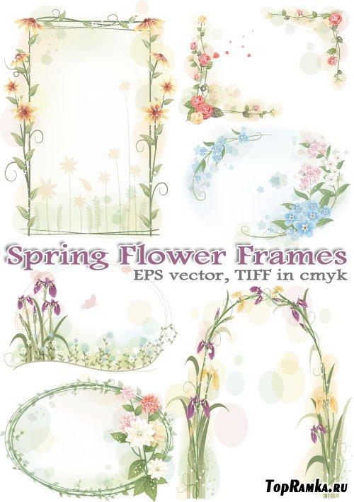 Реалистичные рамки и арки из цветов (AI vector)
