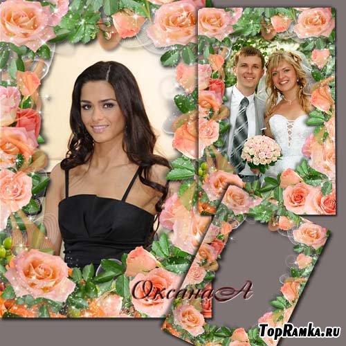 Цветочная рамка  - Персиковые розы