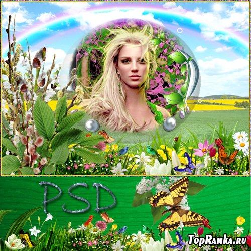 Фоторамка - Весенняя радуга