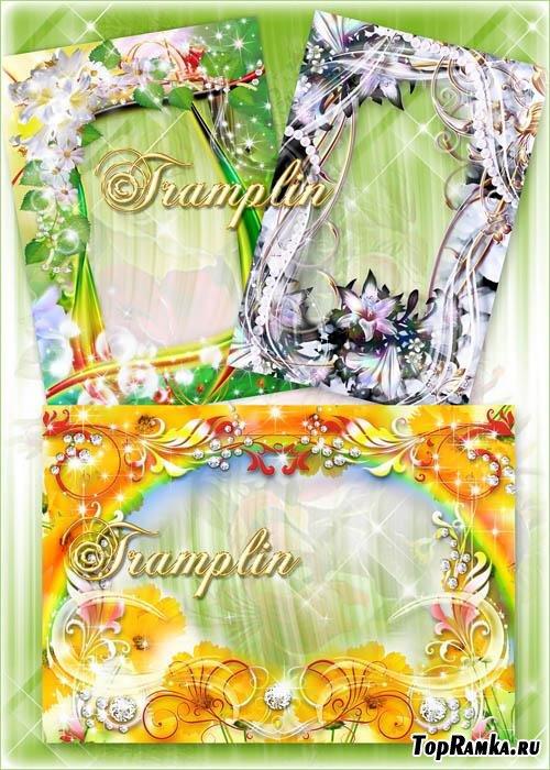 3 рамки с цветами – Сегодня в доме летняя погода