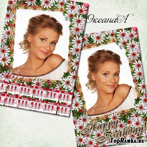Набор из рамки на день рождения и календаря на 2012 год - Восхитительные ромашки