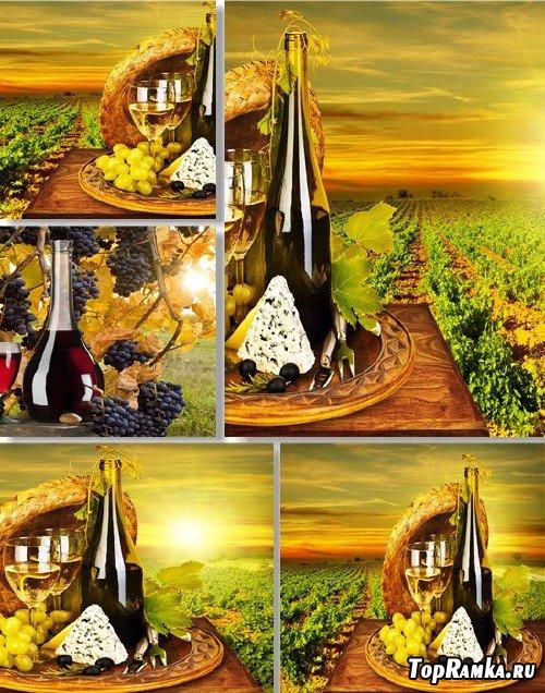 Растровый клипарт - Золотистые виноградники