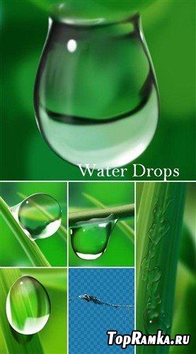 Зеленый мир в водяных каплях - большая коллекция многослойных PSD