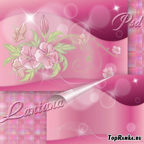 PSD исходник для фотошопа - Сияет розовый букет