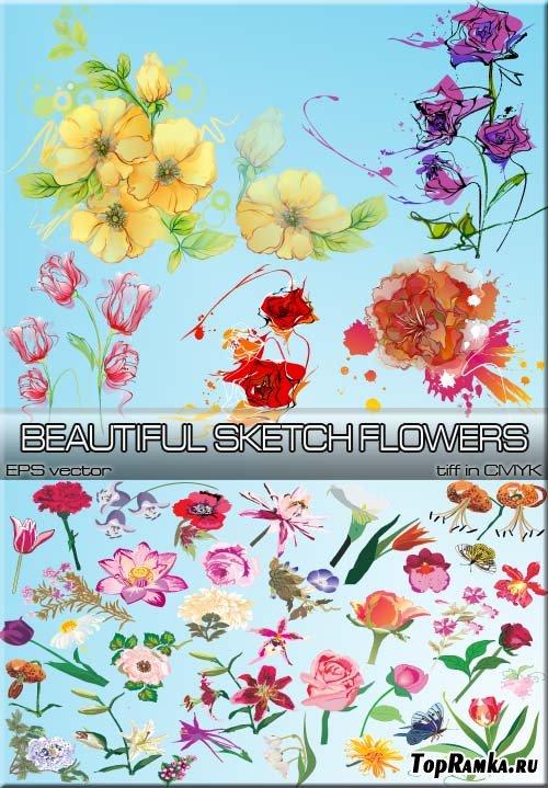 Красивые нарисованные акварелью цветочные композиции (eps vector)