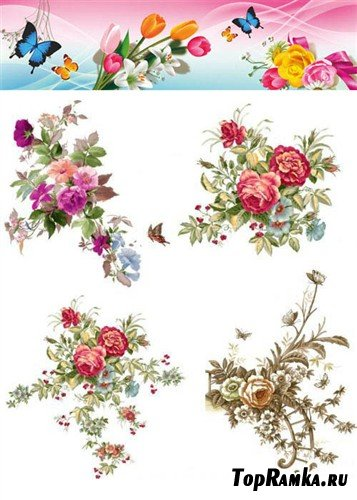 Коллекция цветочных композиций (PSD)