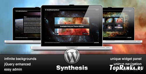 ThemeForest - Synthesis - WordPress + PSD