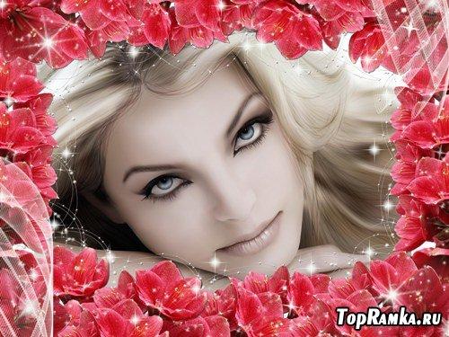 Фоторамка - Великолепие цветов