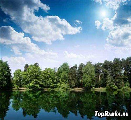 Фотки зеленых деревьев и рек