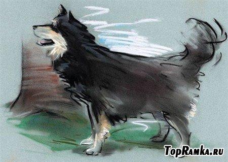 Кошки и собаки в арт картинках