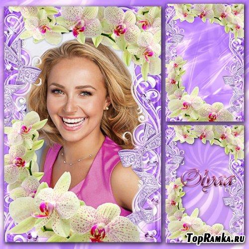Нежная цветочная рамка – Обворожительные орхидеи