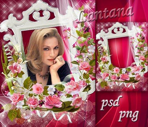 Рамочка - Розы радости цветы, удивительно красивы, изумительно нежны