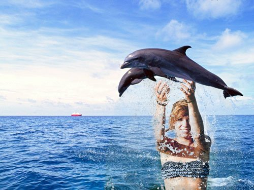 Рамка для фотомонтажа - прыжок дельфинов