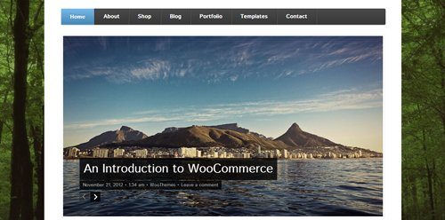 WooThemes - Function v1.0 for WordPress