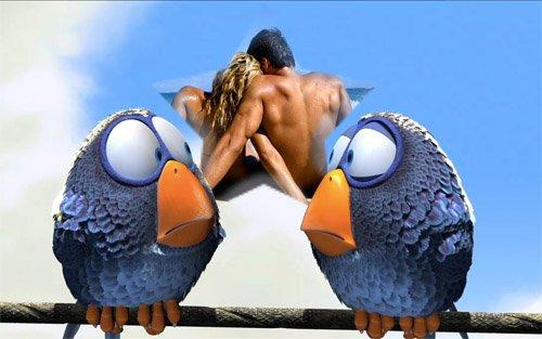 Рамка PSD для фото - смешные птицы