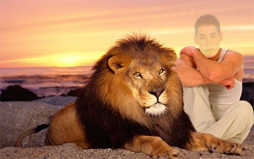 Шаблон для фотошопа - рядом со львом