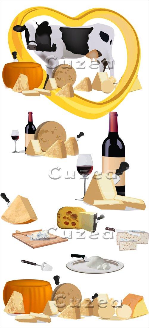 Сыры и вино на белом фоне - vector stock