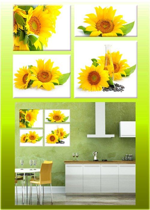 Полиптихи в psd формате - Подсолнухи, картина с подсолнухами, цветы подсолнуха