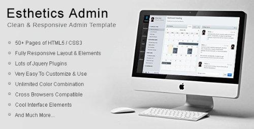 ThemeForest - Esthetics Admin - Clean & Responsive Admin Template