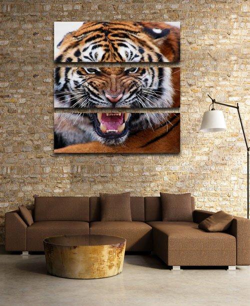 Триптих в psd формате - Тигр, хищник, животные семейства кошачьих